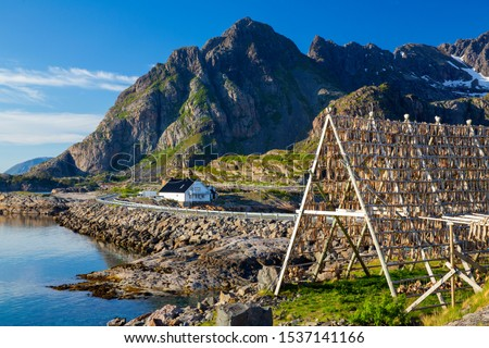 Photo of  Henningsvaer village, Lofoten Islands, Norway, Traditional Drying cod, drying on wooden racks in Lofoten Islands