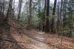 Henson Arch Trail in Kentucky