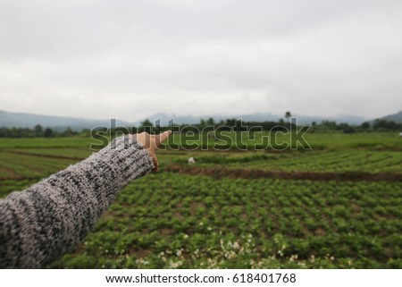 Her hand in the field to the horizon. #618401768