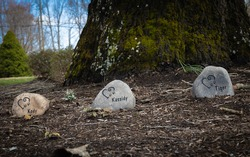 Her is the family's pet cemetery with three pet grave markers.