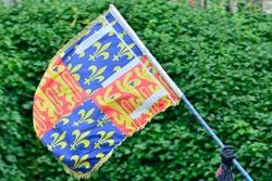 Heraldic Flag Waving