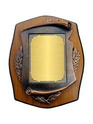 Heraldic shield diploma in wooden frame on white