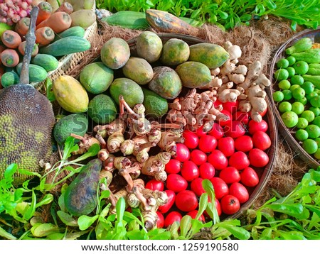 Herb and fruit at fresh and clean garden in chiangmai thailand festival #1259190580