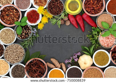 Herb and spice background border with fresh and dried herbs and spices on slate.  #750008839