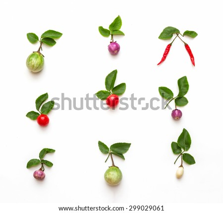 Herb for health on background. #299029061