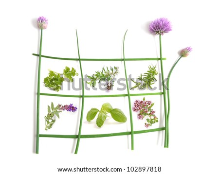 Herb gardens - Fresh herbs collection isolated on white background