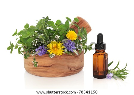 Herb leaf and flower sprigs of rosemary, lavender, mint, majoram and dandelion flowers  in an olive wood mortar with pestle and an essential oil glass bottle, isolated over white background. - stock photo