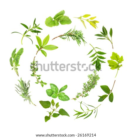 Herb leaf selection forming two circles, over white background.