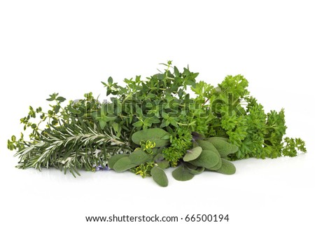 Herb leaf selection of parsley, thyme, sage and rosemary with flowers  isolated over white background.