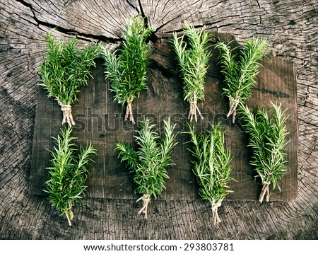 Herb Rosemary. Bunches of fresh herbs on wood. Food ingredients