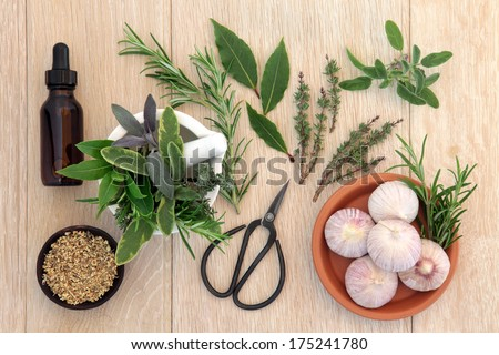 Herb selection with aromatherapy essential oil bottle and old gardening scissors over brown paper background.
