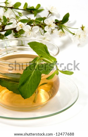 herbaceous tea in glass cup with blossoming spring branch.