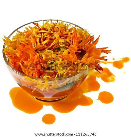 herbal calendula in the glass  Isolated white background