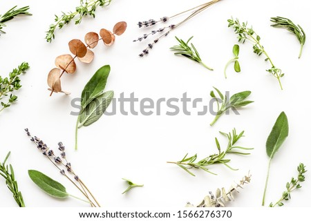 Herbal formulations for health care on white background top view pattern frame copy space