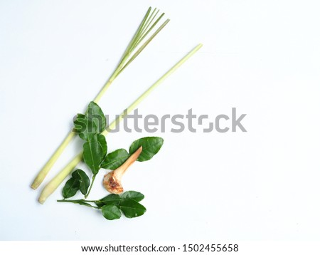 Herbal Ingredients for Tom-Yum soup, Set ingredient of thai spicy soup on white wooden background.