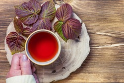 Herbal medicine, homeopathy, hot healing morning herbal aromatic tea infusion of autumn raspberry leaves in the hands of a woman flatlay on a natural wooden background top view with copy space