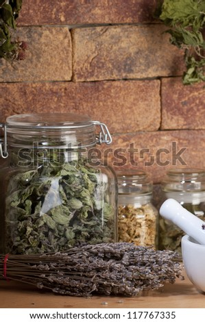 herbal medicine : lavender