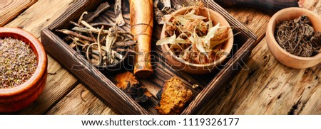 Herbal medicine,medicinal herbs and herbal medicinal root.Natural herbs medicine.Chinese herbal medicine