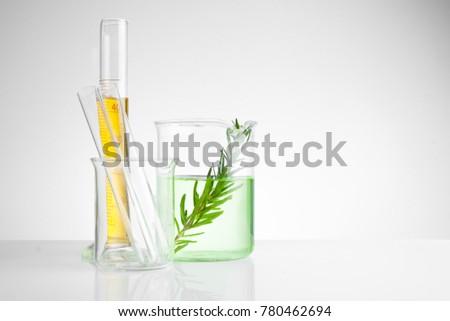 herbal medicine natural organic and scientific glassware, Research and development concept. Stock photo ©