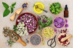 Herbal medicine preparation with fresh herbs and flowers, aromatherapy essential oil, mortar with pestle and scissors on hemp paper background. Top view.