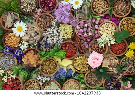 Herbal medicine with herbs and flowers used in chinese and natural alternative remedies with fresh herbs and flowers forming an abstract background. Top view.