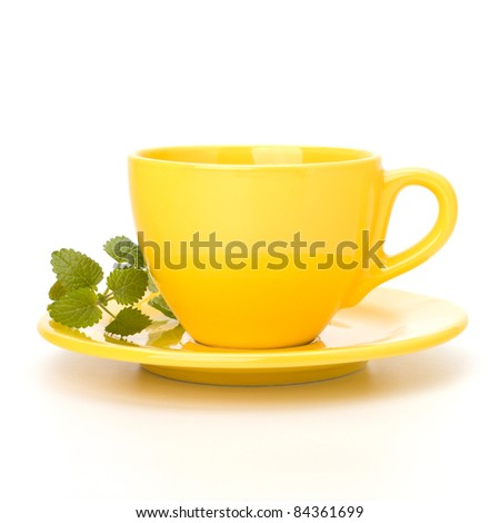 Herbal peppermint tea cup isolated on white background. Alternative medicine concept. #84361699