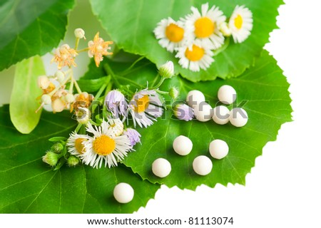Herbal remedy alternative medicine. Chamomile flowers, herbs and homeopathic medication isolated on white background