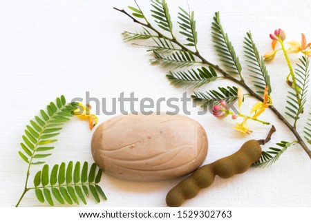 herbal soap extract vegetation tamarind health care for body skin of lifestyle clean a bath arrangement flat lay style on background white.