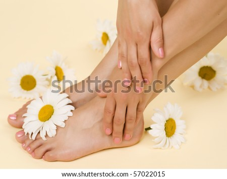 Herbal Spa.Feet and Hands with daisy flowers
