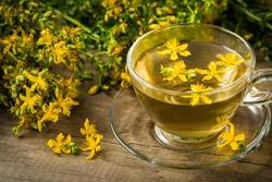 Herbal tea made from st. john's wort