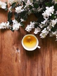 herbal tea on wooden background with spring jasmine flowers