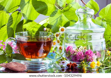 Herbal tea with natural cocoa and fresh herbs