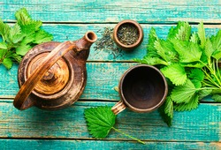 Herbal tea with nettle leaves.Herbal medicine,homeopathy.Homeopathic herbs