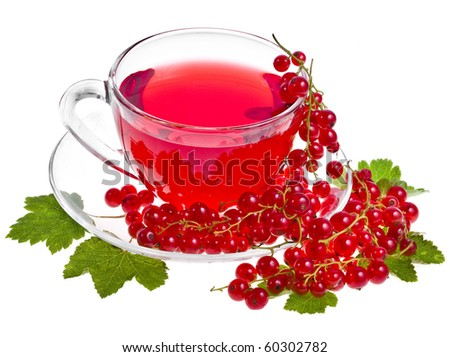 herbal tea with red currant extract and berries  isolated on white