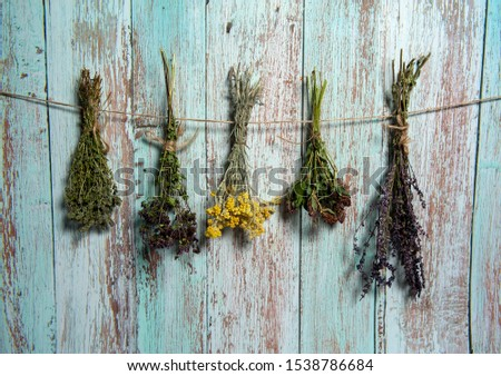 Herbal treatment. Bundles of dried herbs and aromatic herbs. Tansy, thyme, sage, clover and oregano hang on a light blue wooden background.