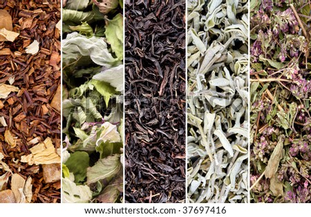Herbs and tea collection