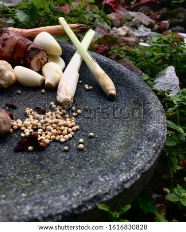 Herbs, herbs and spices typical of the archipelago cuisine that is placed on a stone (Cobek). Ready to be mashed.