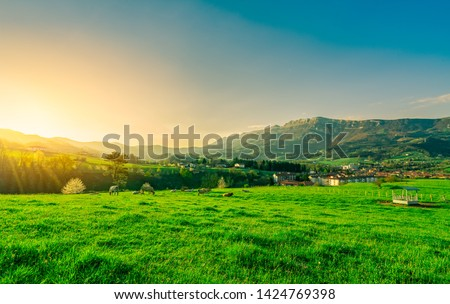 Herd of cows grazing at green grass field with beautiful sky and morning sunlight. Cow farming ranch. Animal pasture.  Landscape of green grass field and mountain near village. Farmland in spring.