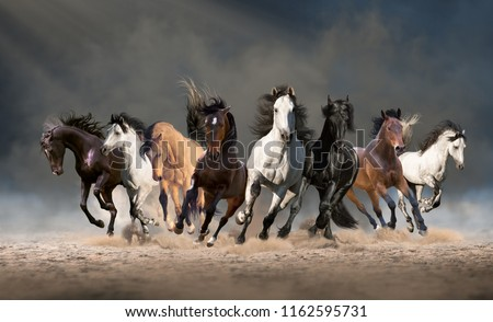 Herd of horses run forward on the sand in the dust on the sky background