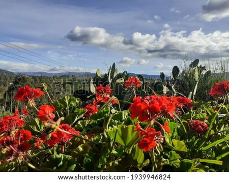 Hermoso paisaje que cautiva la belleza de los paisajes Foto stock ©