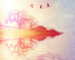 herons flying over a lake and trees done with a retro vintage instagram filter