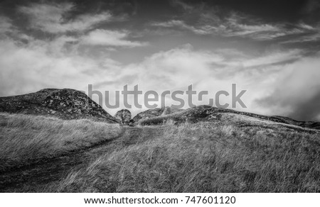 Hexham, Northumberland, UK. Sycamore Gap in autumn with a view of Hadrian's Wall following contours of hills and a bright blue sky in Northumberland National Park near Hexham, Northumberland, UK. #747601120