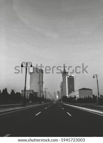Heydar Aliyev avenue (black and white)