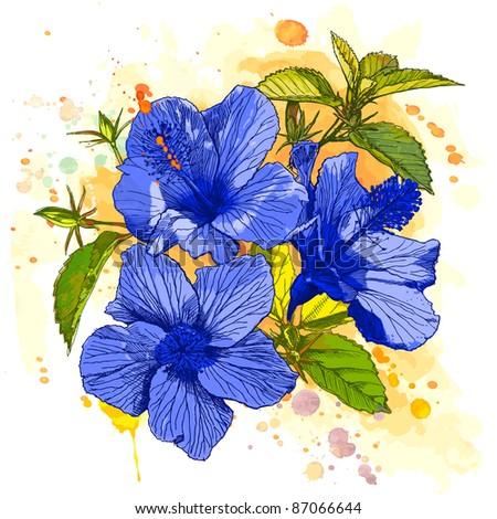 Hibiscus flower - hand draw. Bitmap copy my vector