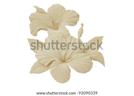 Hibiscus flower pattern on the walls, plaster, natural color.