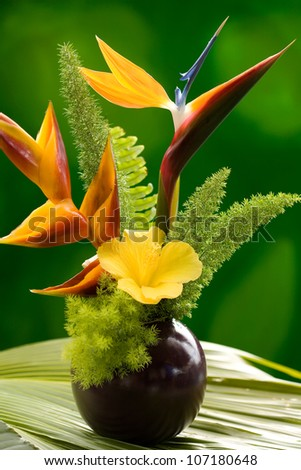 Hibiscus, Heliconia and Bird of Paradise flowers  in a vase in the garden. Hawaii, Maui, USA