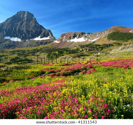 Hidden Lake Trail, Logan Pass, Glacier National Park, Montana, United States
