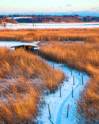 Hidden old small house near frozen lake. Winter view of marshlands. Way to secret place to relax alone in nature. Winter landscape. Snowy path through field to cabin. Dry yellow orange reeds and grass