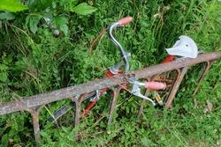 Hidden, rusty bicycle in a garden.