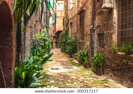 hidden streets of the ancient...